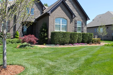 house-with-lawn